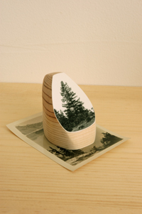 Timber, Copyright 2011, Alice Shaw